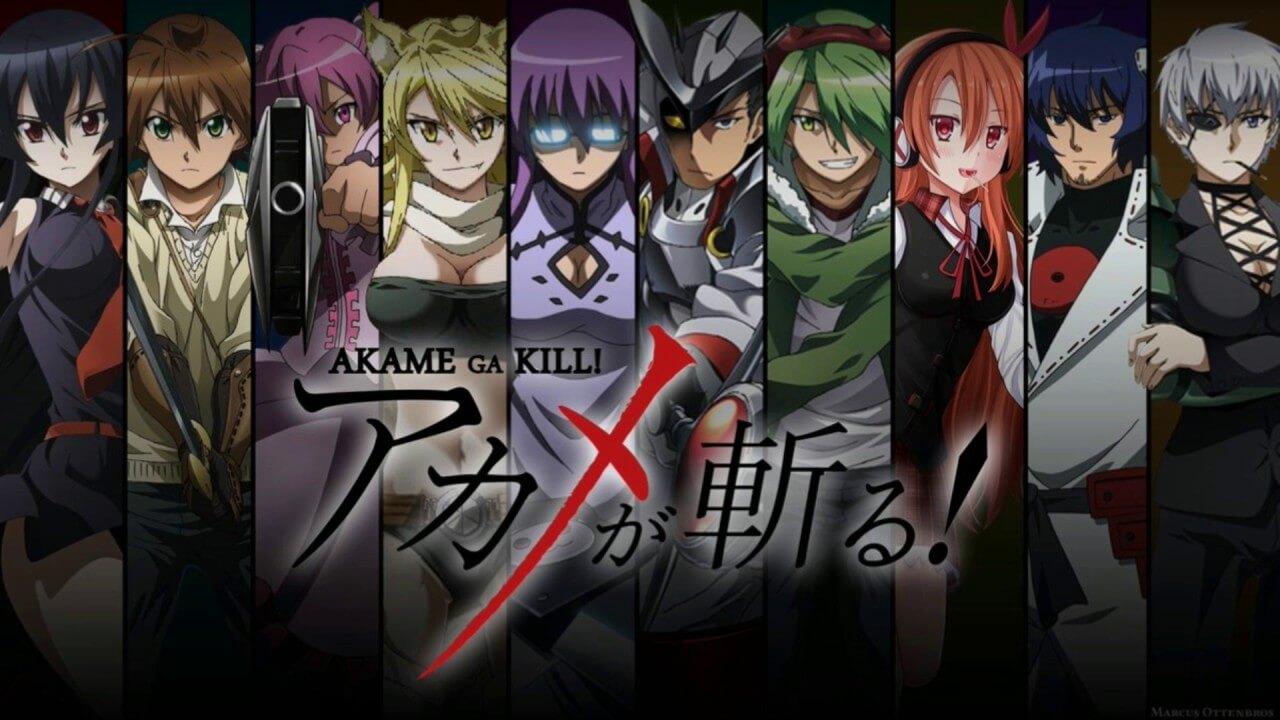 Akame Ga Kill! Anime İncelemesi